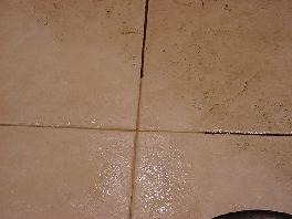Tile and Grout Cleaning Indiapolis